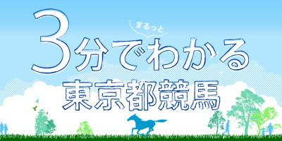 3分でまるっとわかる東京都競馬